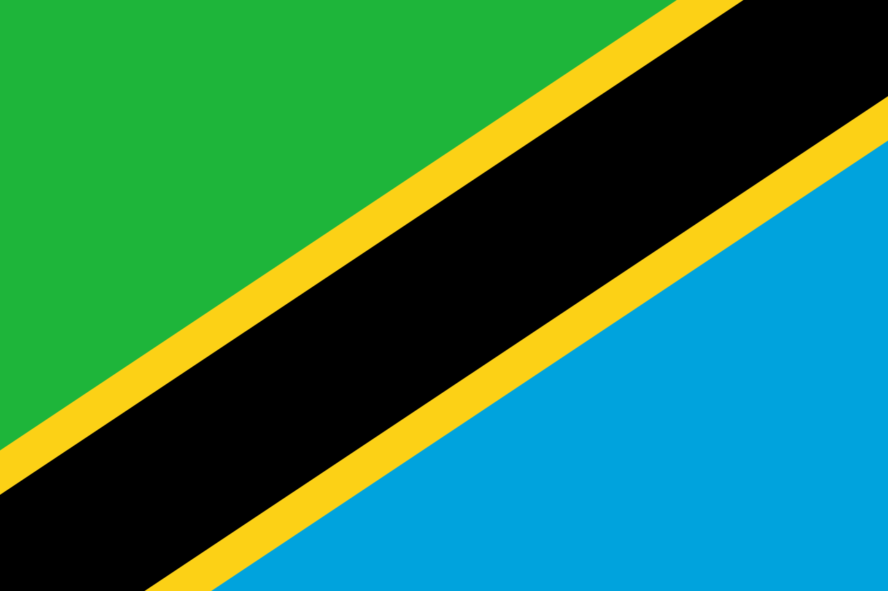 Chemical-Free Tanzania Pool Dealer Flag