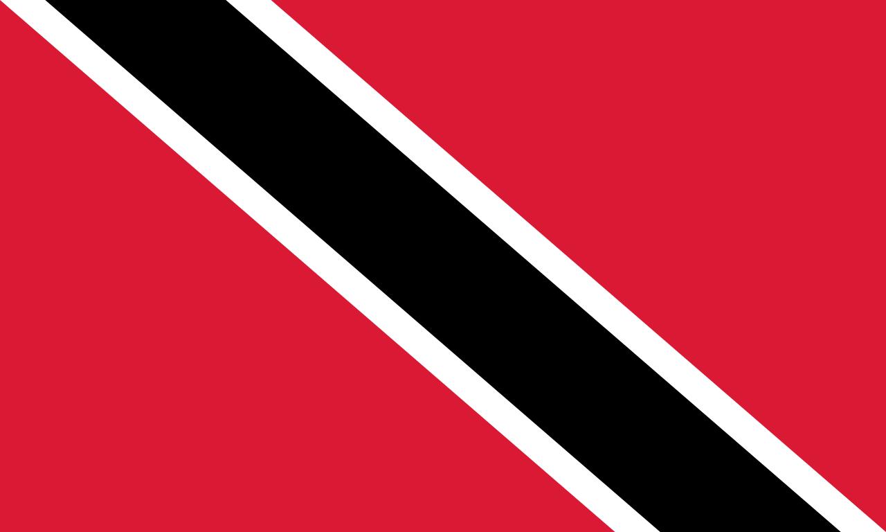 Chemical-Free Trinidad & Tobago Pool Dealer Flag