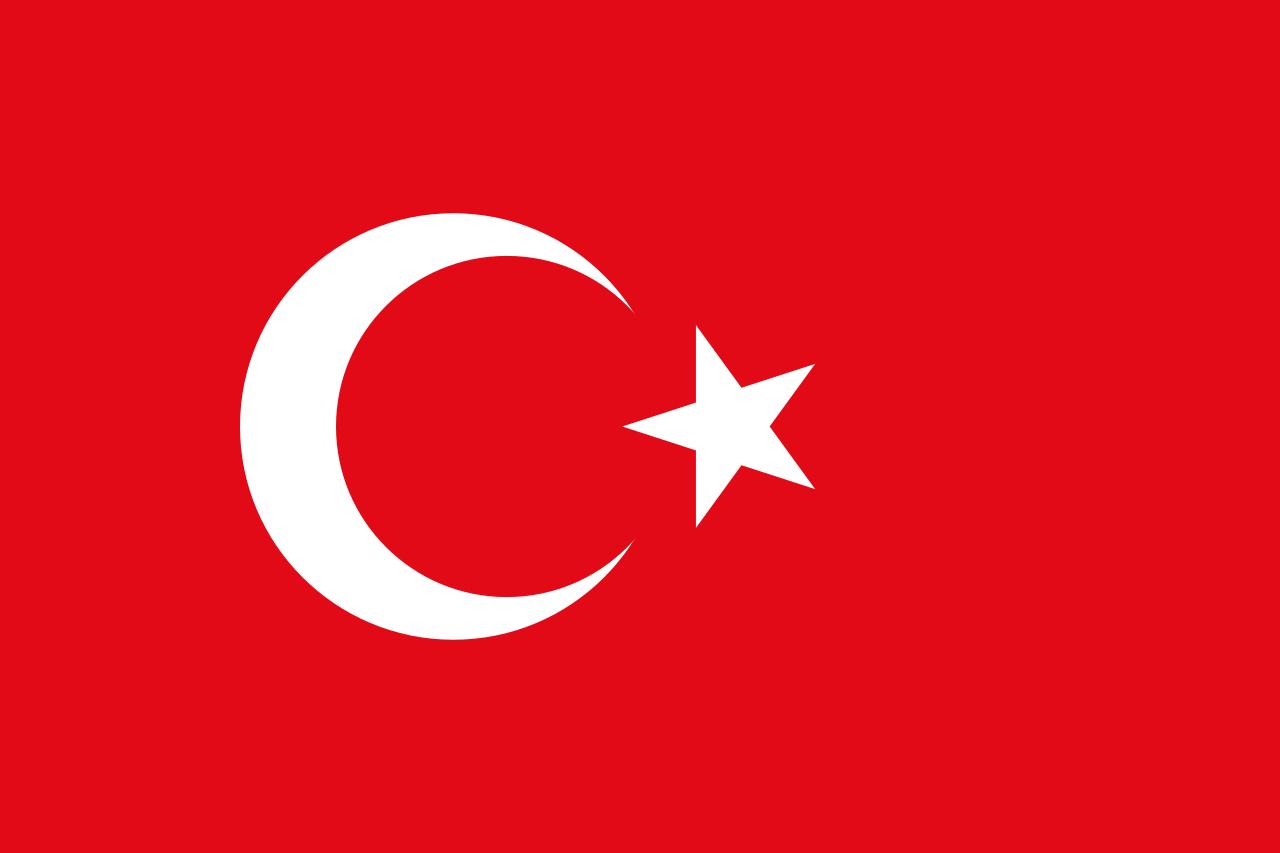 Chemical-Free Turkey Pool Dealer Flag