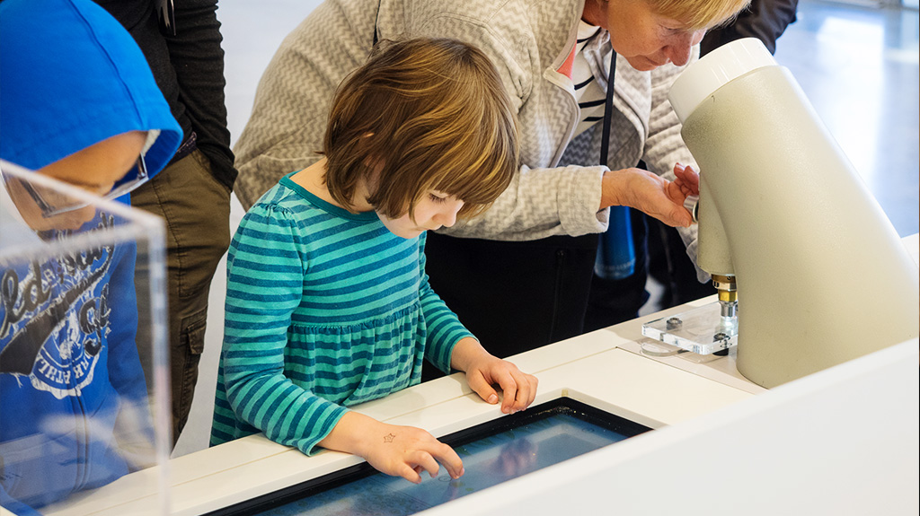 Digital Signage in Museum:  Exhibiting Information in Interesting Ways
