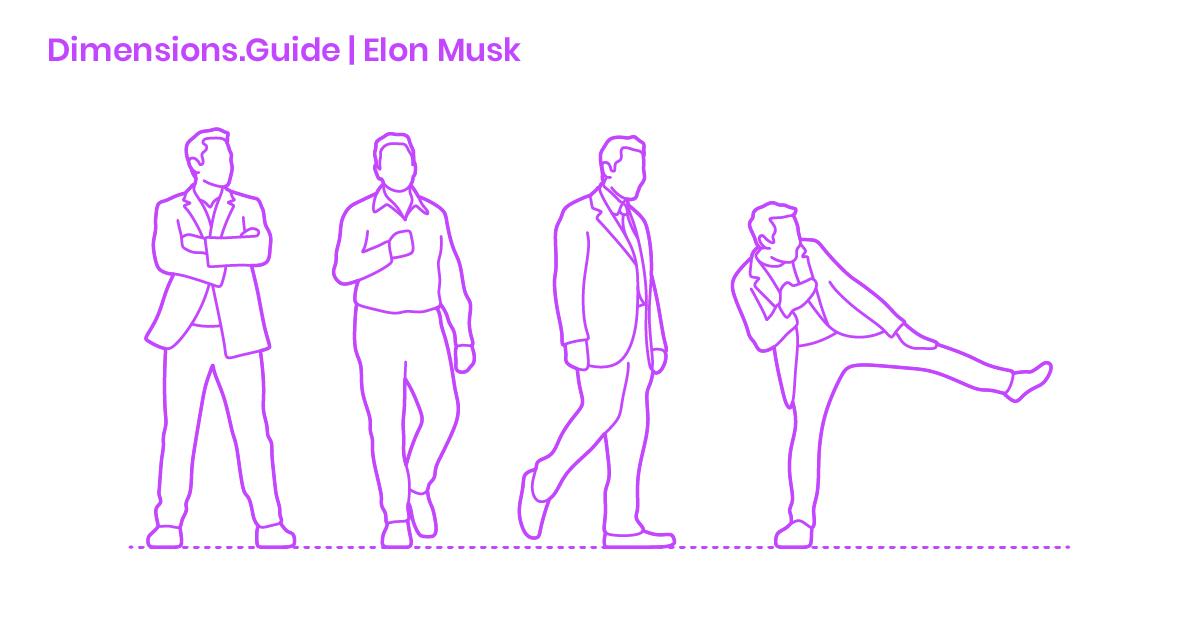 Elon Musk Dimensions Drawings Dimensions Com