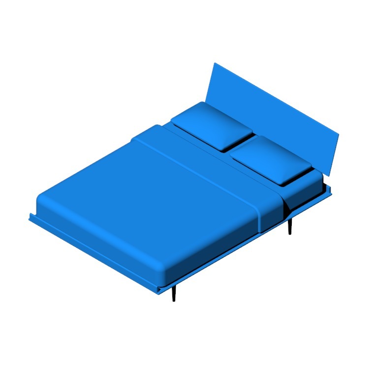 3D model of the Nelson Thin Edge Bed viewed in perspective