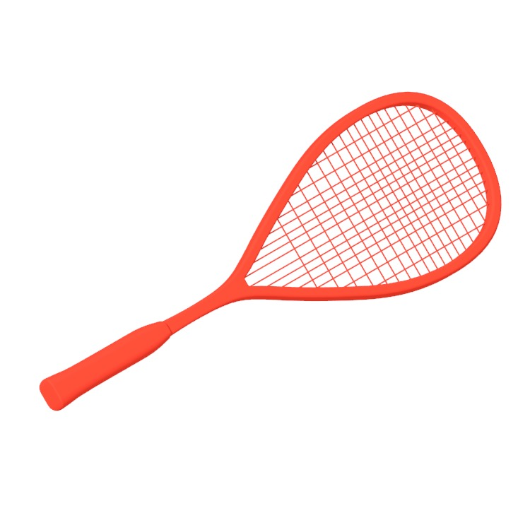 View of a Squash Racket in 3D available for download