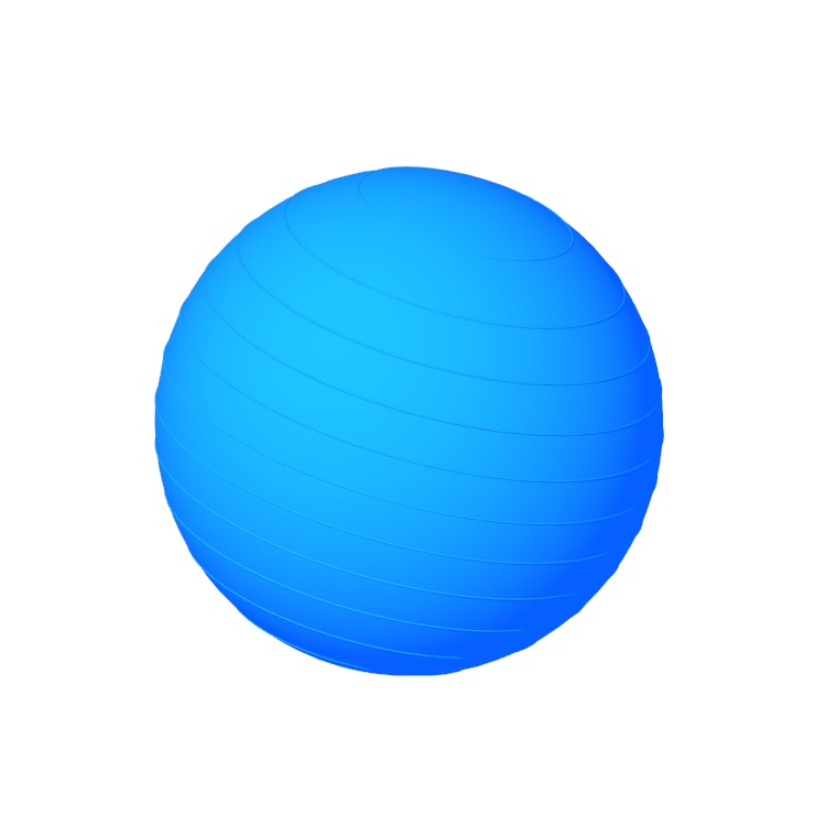3D model of the Exercise Balance Ball viewed in perspective