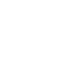 Spidertracks Icon