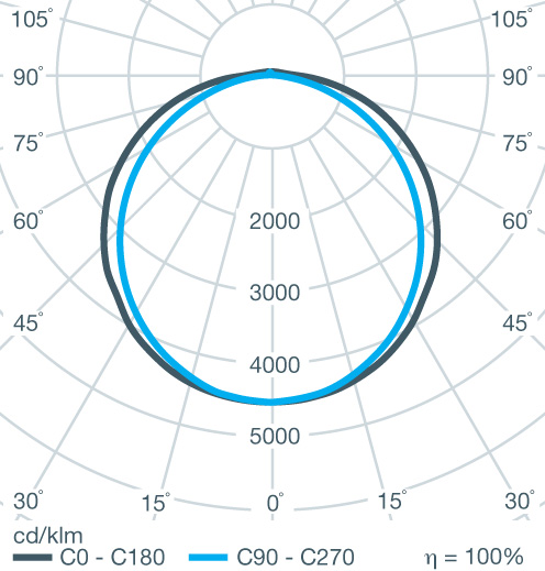 Polar Curve Image