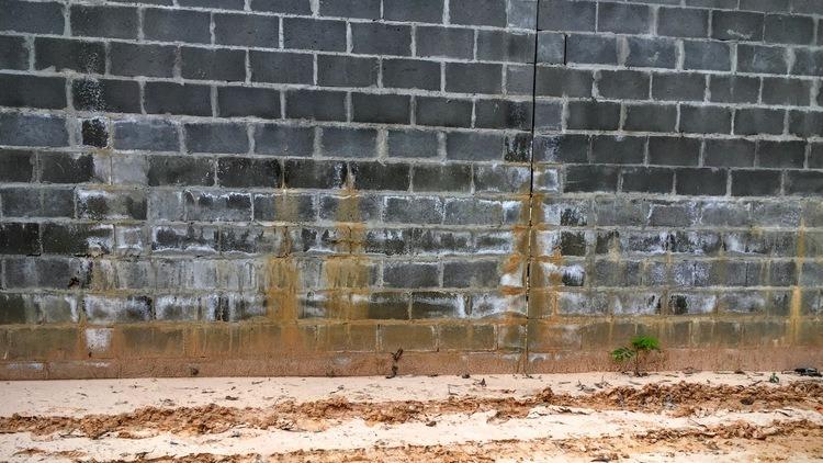 Eflorescência emBloco de Concreto