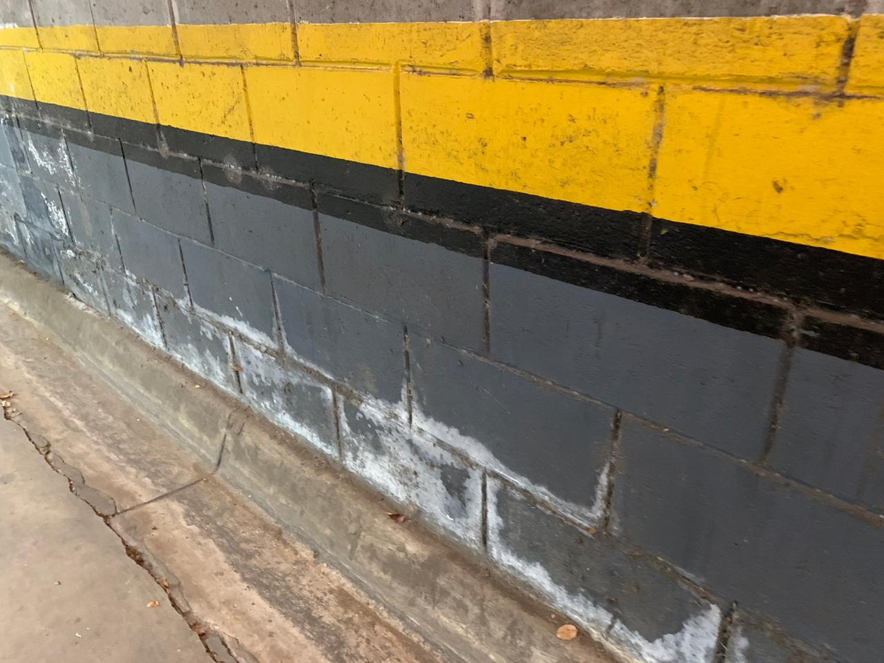 Eflorescência em Bloco de Concreto Através de PinturaAcrílica