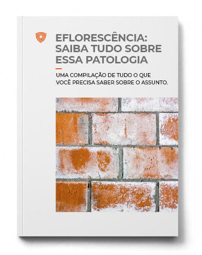 Eflorescência: Saiba Tudo Sobre Essa Patologia
