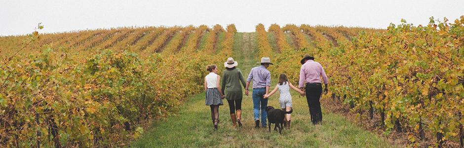 ワインはブドウ畑に従う