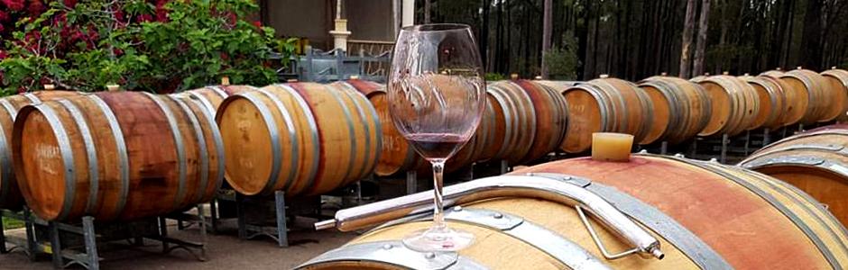 一切の妥協を許さないブドウからワインまでのアプローチ