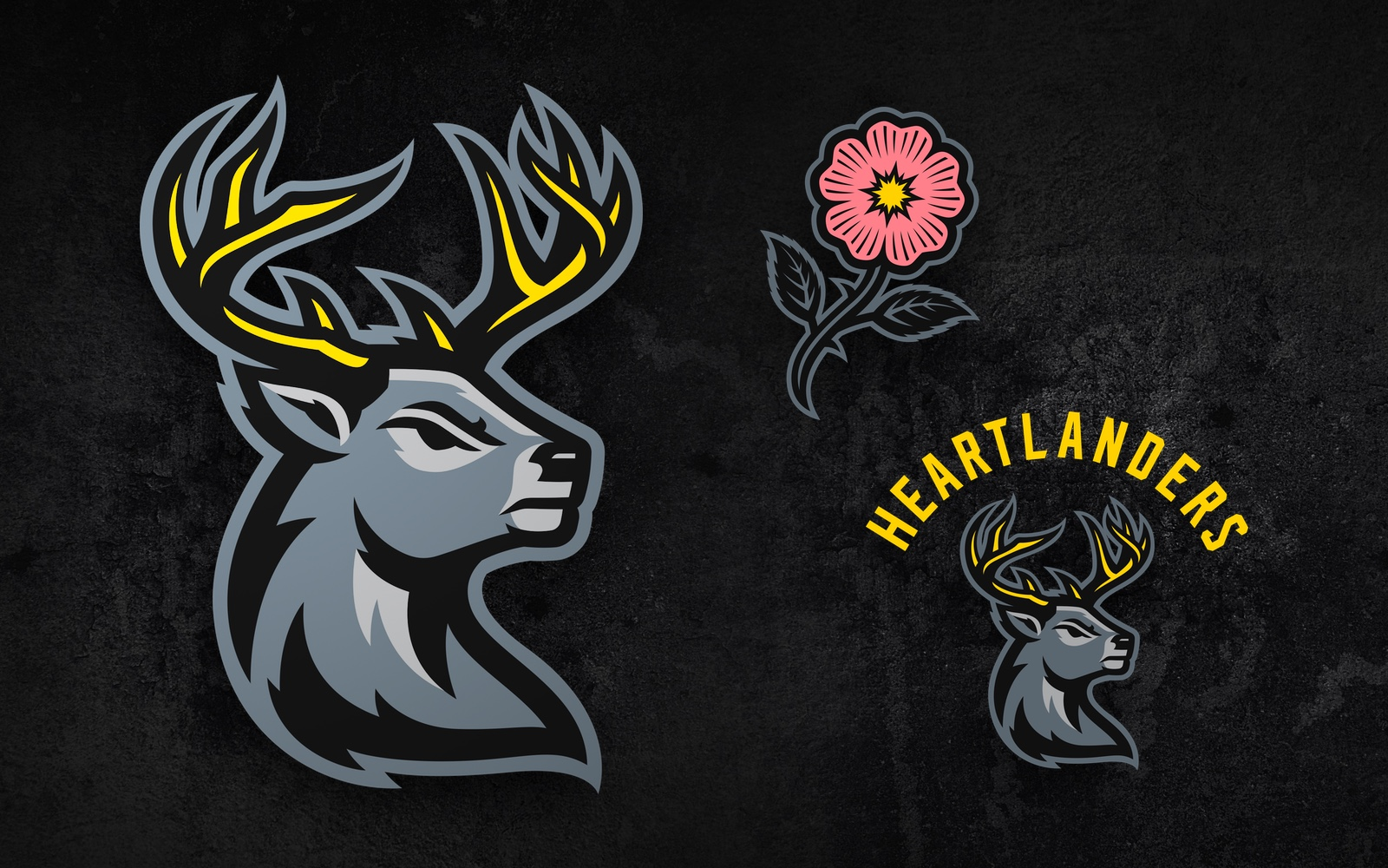 Iowa Heartlanders unveil name and logos