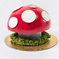 Messina App Mushroom