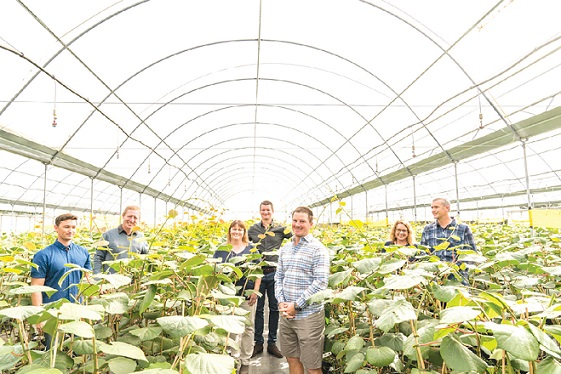 Invest with southern cross horticulture