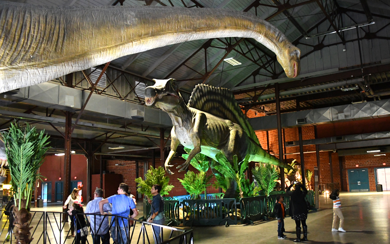 attractions giant dinosaurs baby dinosaurs and walking dinosaurs