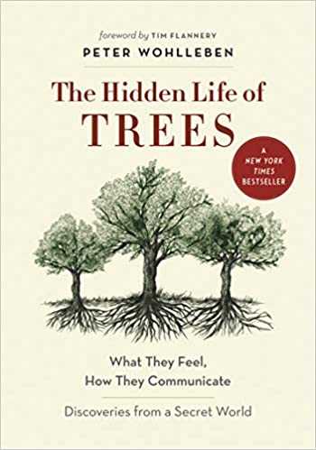 The Hidden Life of Trees:  What They Feel, How They Communicate, 2015
