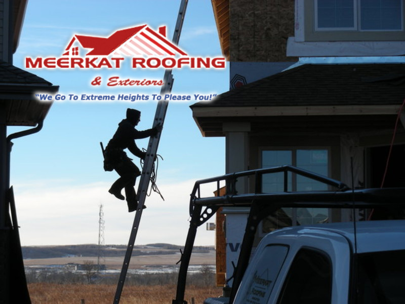 Meerkat Roofing LTD