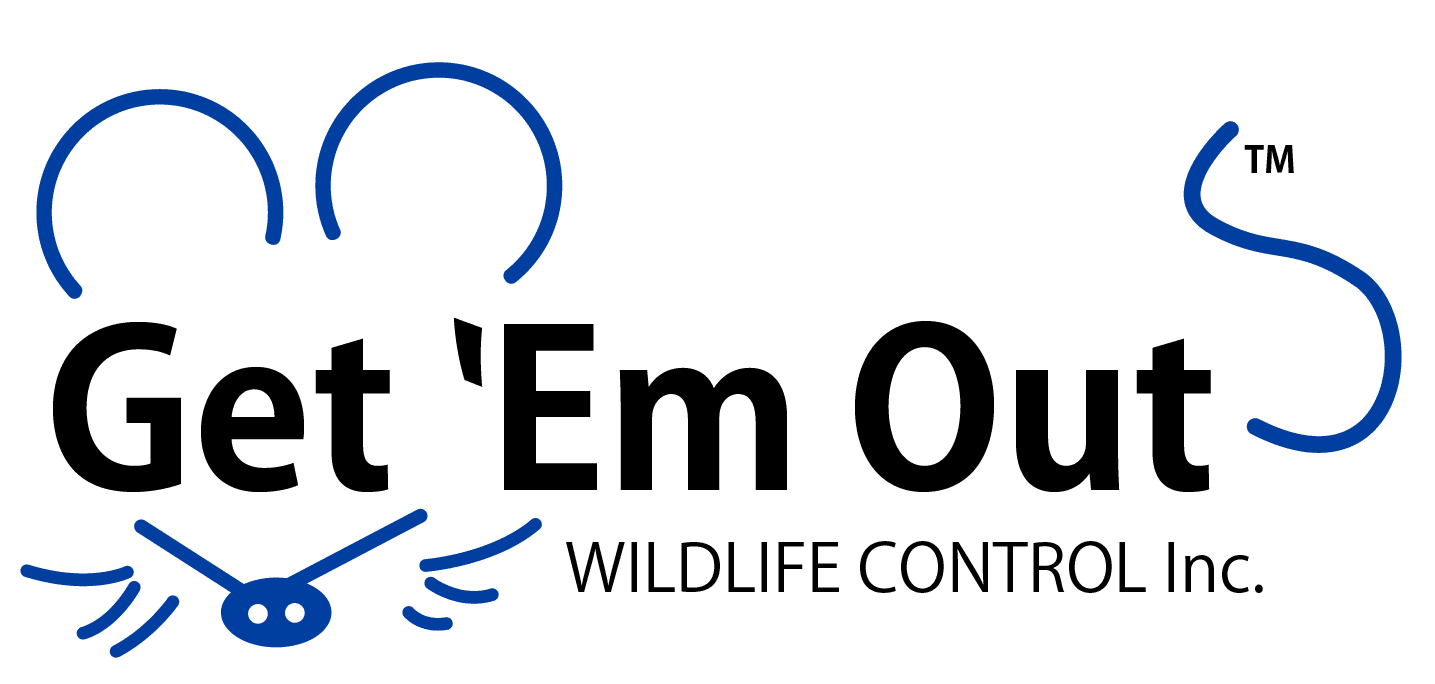 Get 'Em Out Wildlife Control Inc