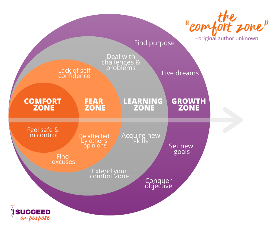 A graph going from comfort zone, fear zone, learning zone to growth zone.