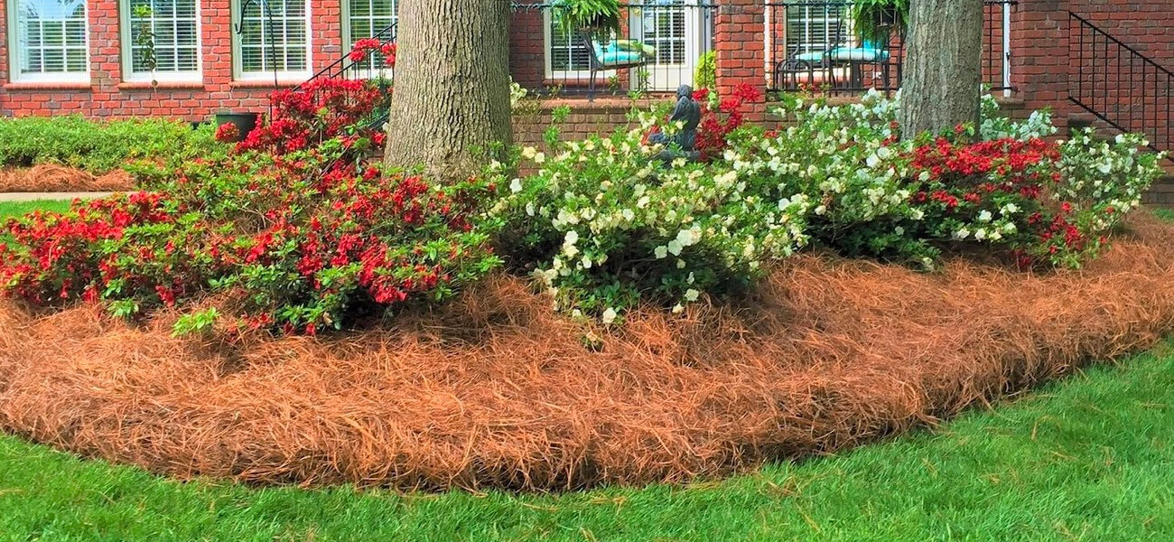 Landscape Projects In Raleigh And Charlotte Nc