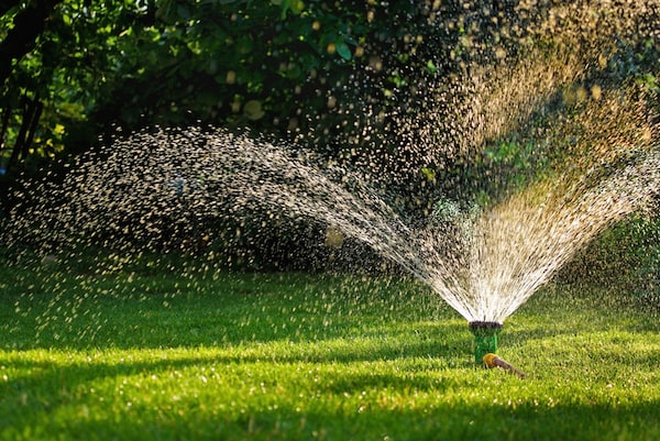 Watering Your Lawn Canopy Raleigh NC
