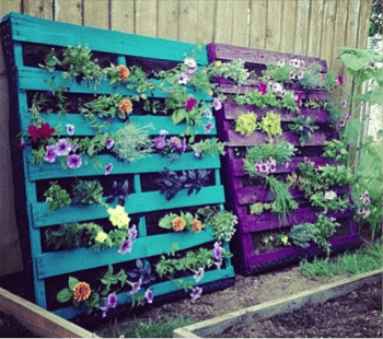 Pallet Verticle Garden - 5 DIY Pallet Ideas Canopy Lawn Care Raleigh, NC