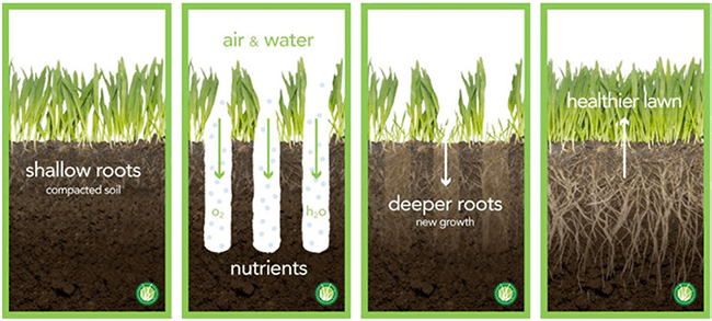 lawn aeration Raleigh
