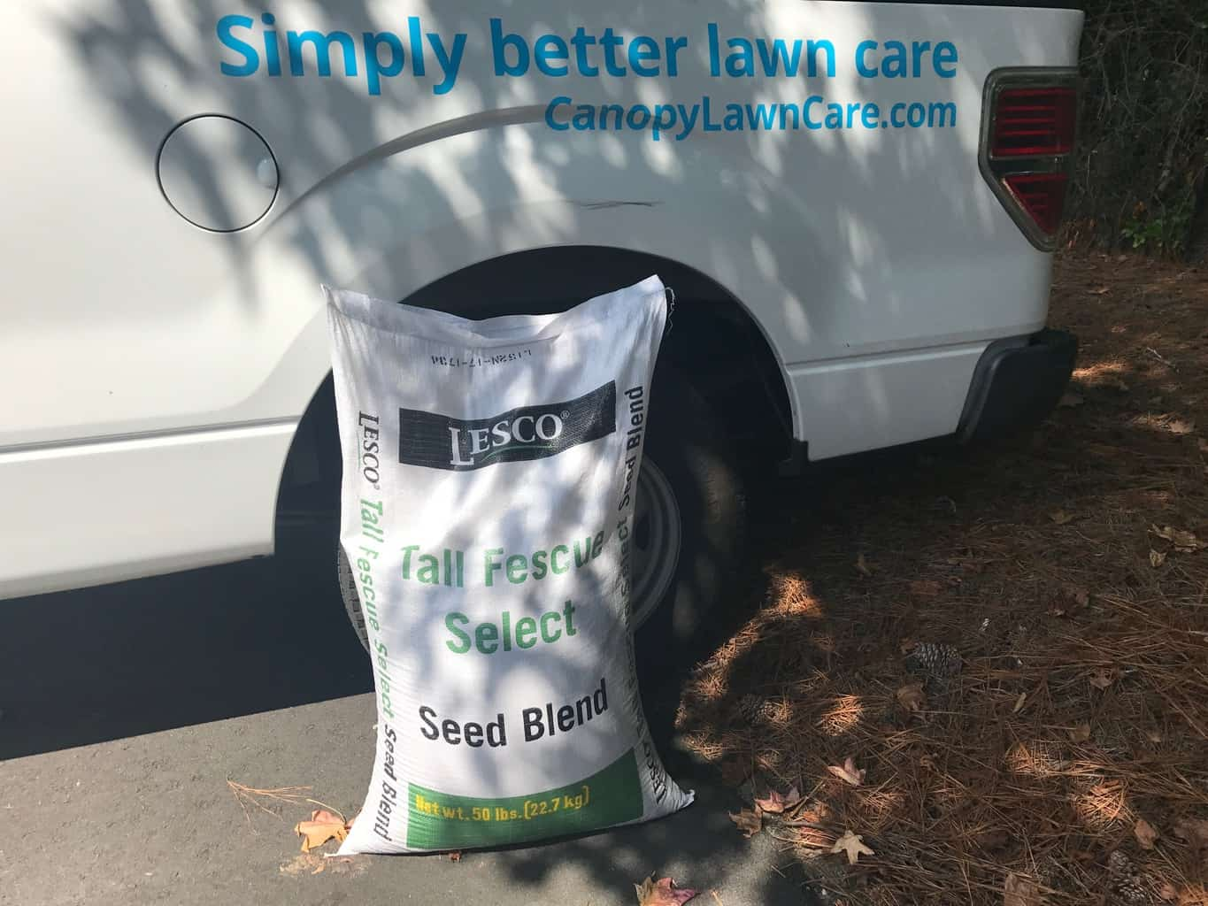 overseeding - use high quality seed - canopy lawn care