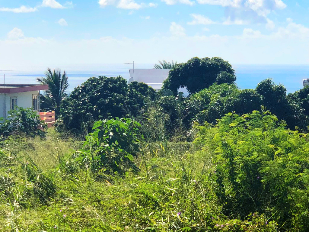 Land for sale in Mare Gravier, Beau Bassin