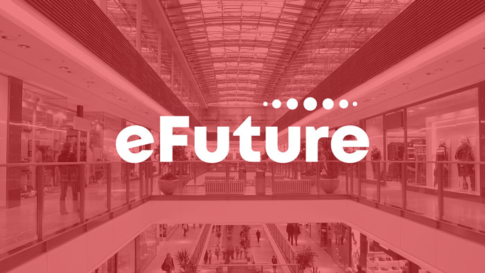 eFuture: End-to-end Retail Solutions