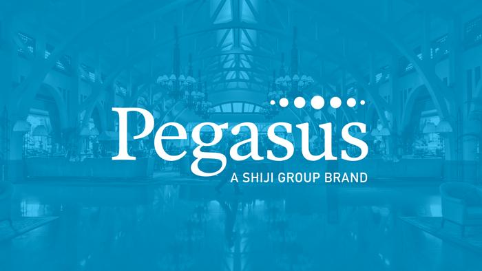Pegasus - PMS System