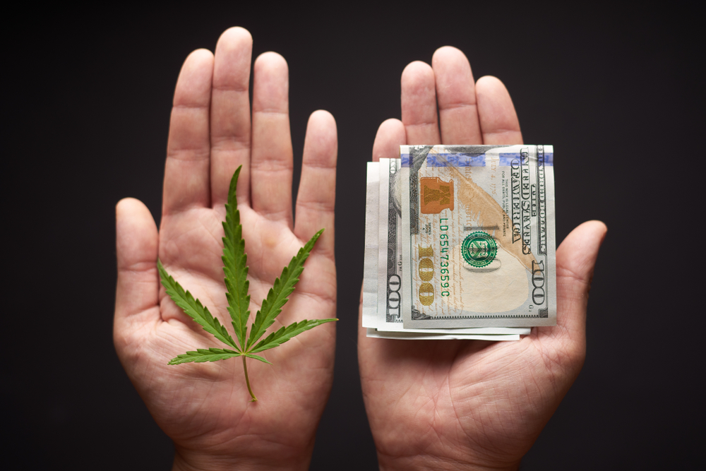 Cannabis Lending? How Banks are Getting Comfortable