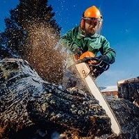 Weeklysafety.com exclusive safety meeting topic specific to the construction industry that provides guidance on planning ahead, common hazards, PPE requirements, and key safety precautions that every chainsaw operator should be aware of before using these powerful tools.