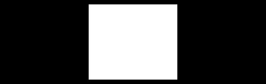 Tareno International Asset Managers Logo