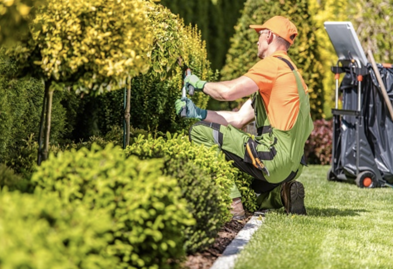 6 Tips to Build a Solid Landscaping Company