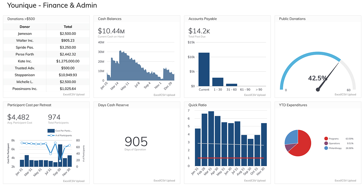 The Younique Foundation Financial Health Dashboard