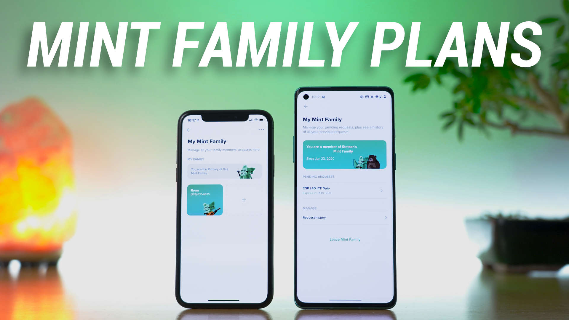 Mint Mobile family plan section of application