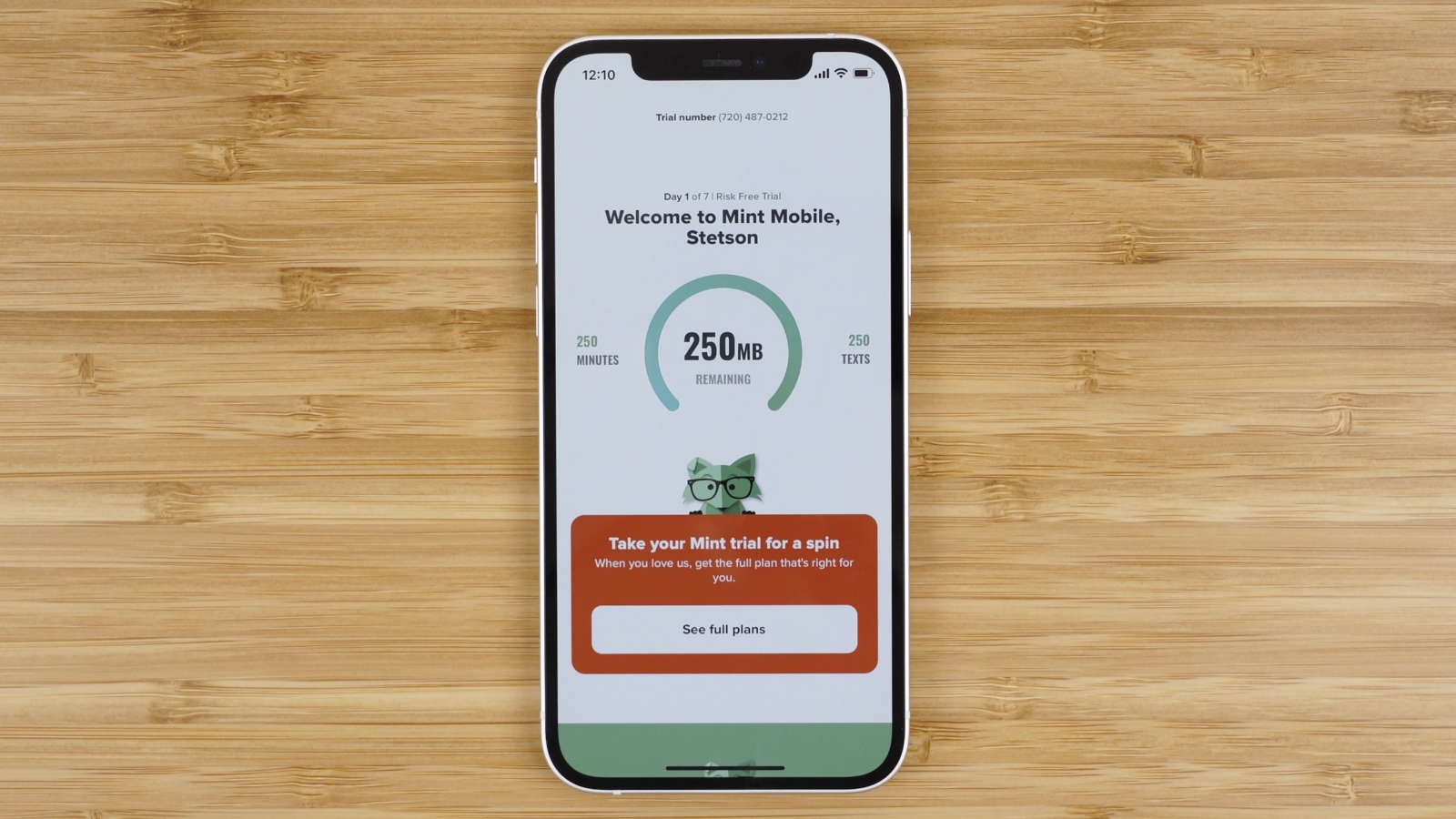 Mint Mobile free trial account dashboard
