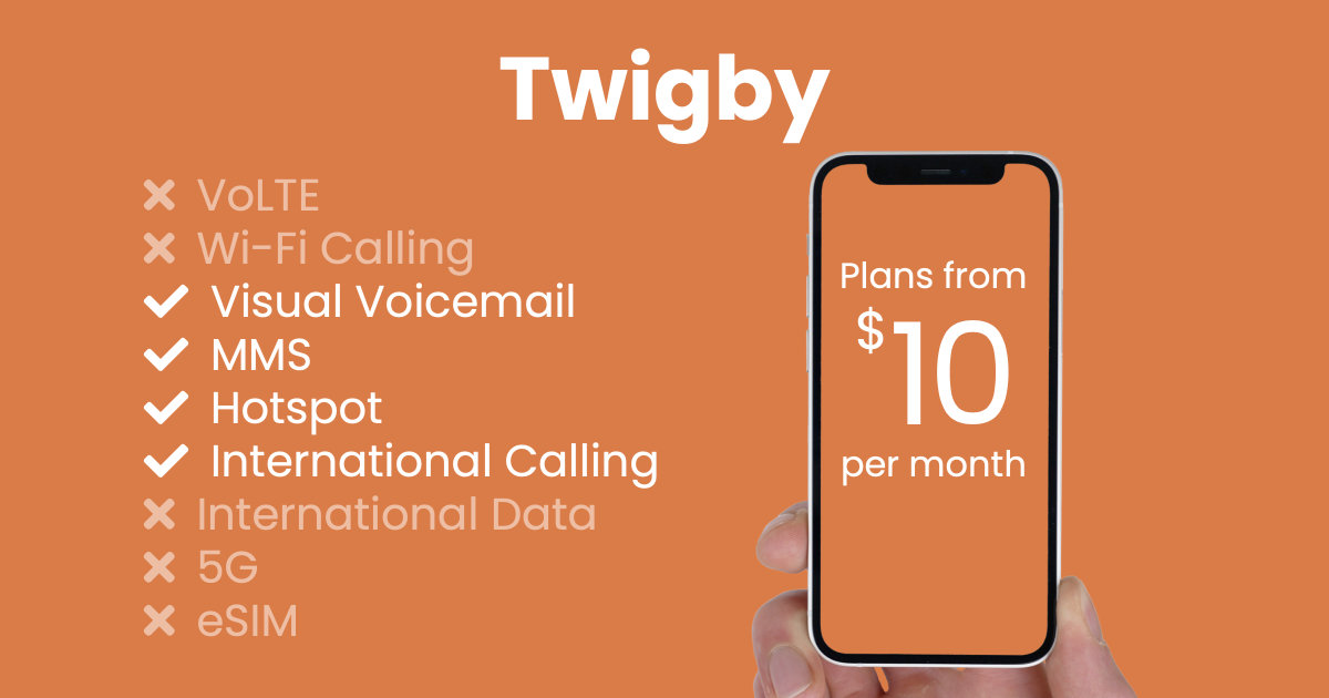 Twigby plan features and starting price