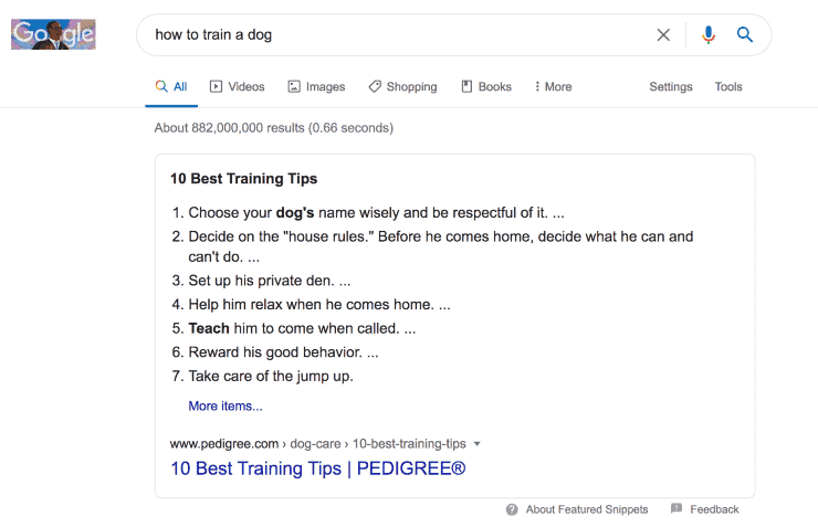 Google search results for how to train a dog - seo tips
