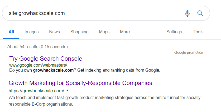 Google's index search results display - SEO Website Audit