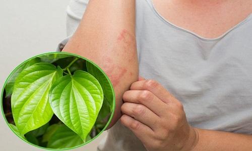 Cách chữa viêm da cơ địa bằng lá trầu không với nước tắm
