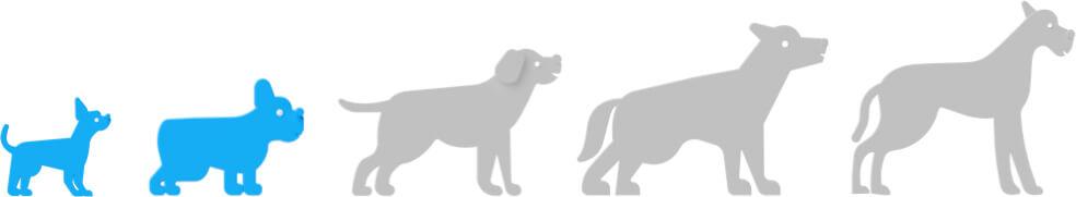 Breed size