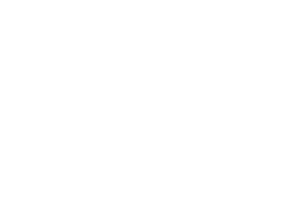 Sterling Investment Group