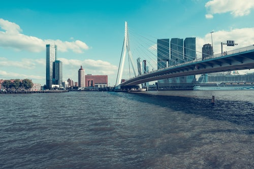 Erasmus Bridge in Rotterdam during the day
