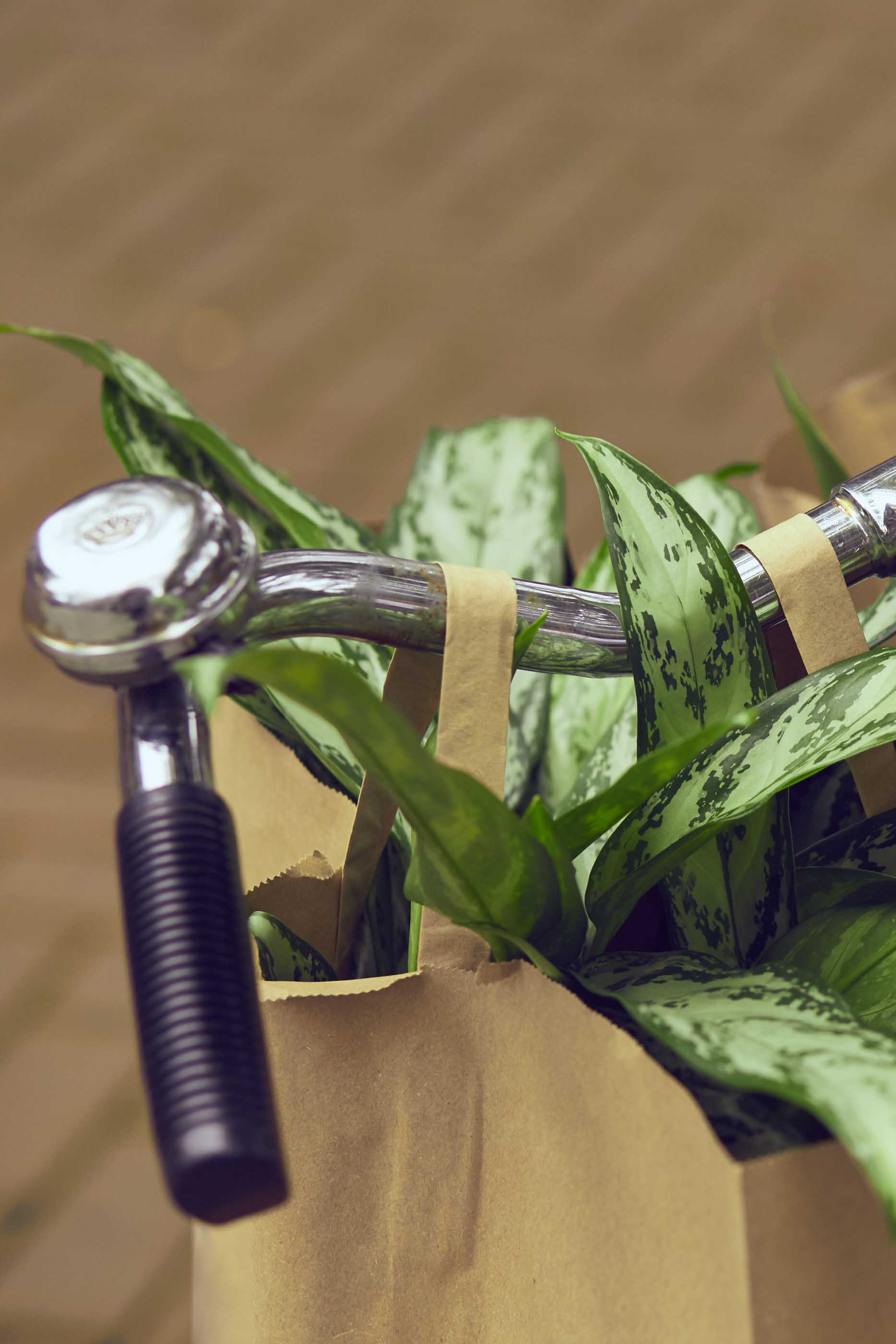 Detail of bycicle handbar holding two paper bags with plants inside