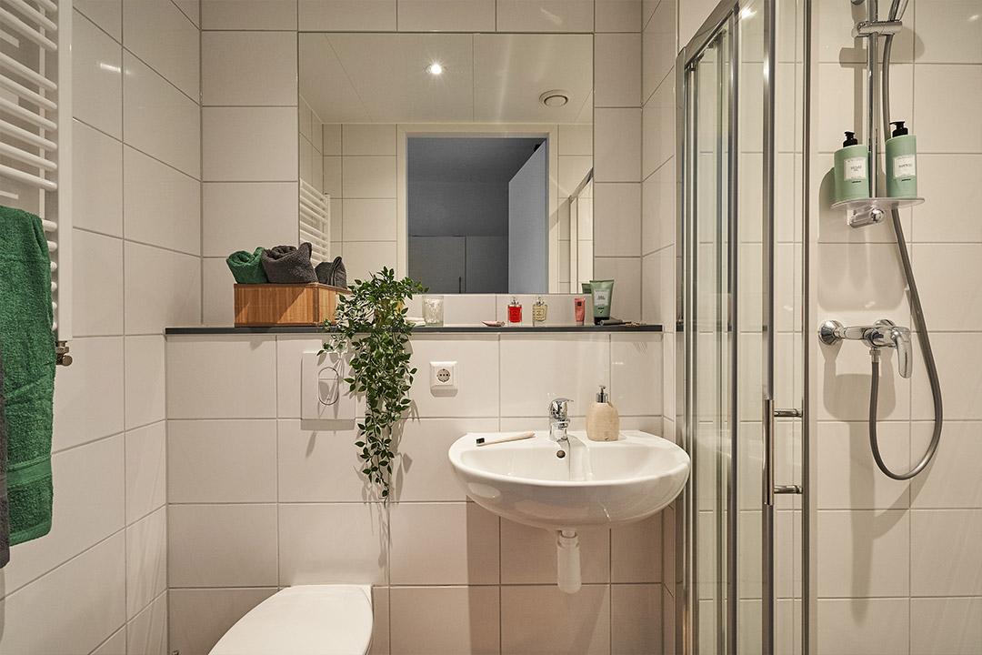 OurDomain Amsterdam South East Executive Studio bathroom
