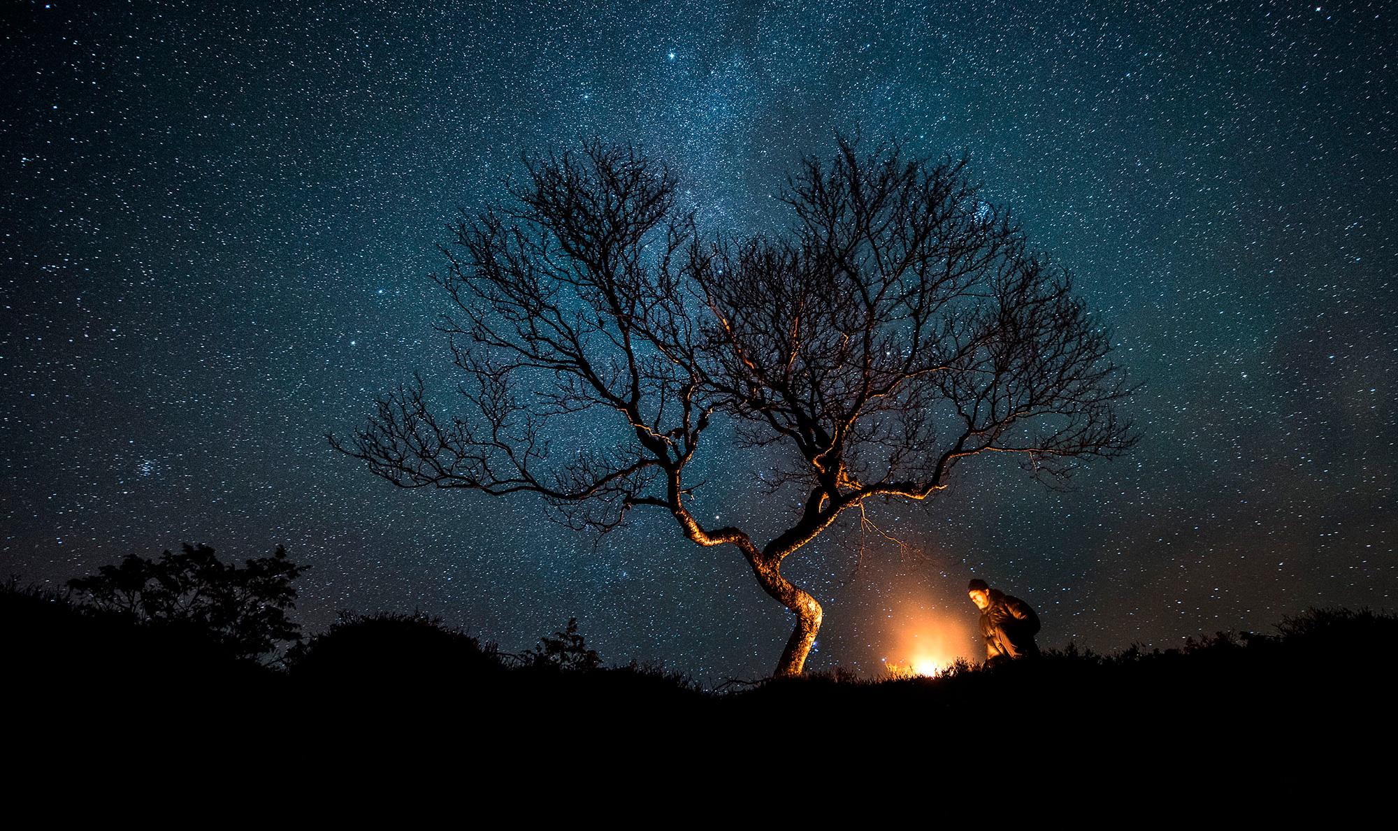 Image of starry night sky