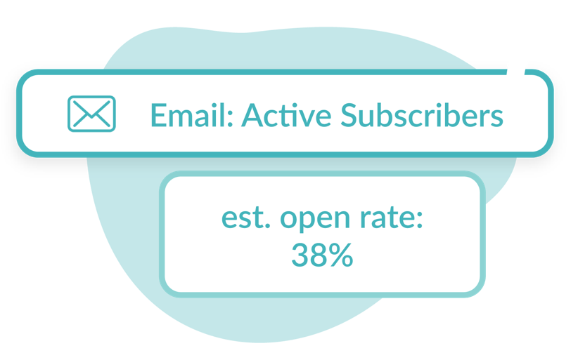 Illustration of sending an email campaign with Hive's open rate estimator