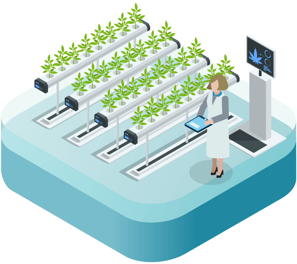 An animation of a cannabis cultivation facility.
